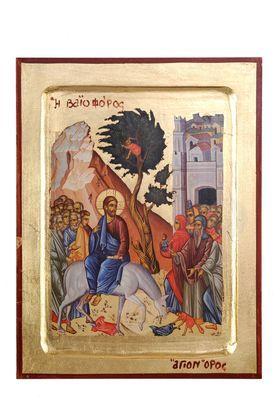 Sunday of Lazarus (Vaioforos)